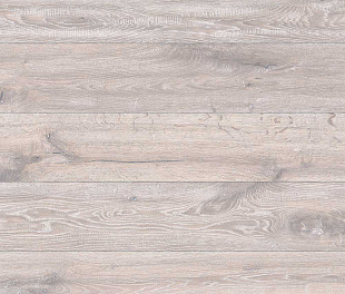 Ламинат Wiparquet Style 8 Realistic Кальвадос 47419